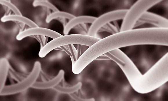 http://cdn.singularityhub.com/wp-content/uploads/2014/01/1000_genome_dna-1.jpg