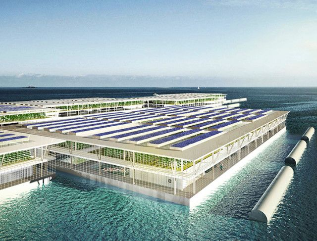 Solar-Powered Floating Farms 1