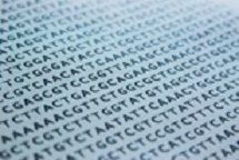 dna-sequence-1570578-639x427-1