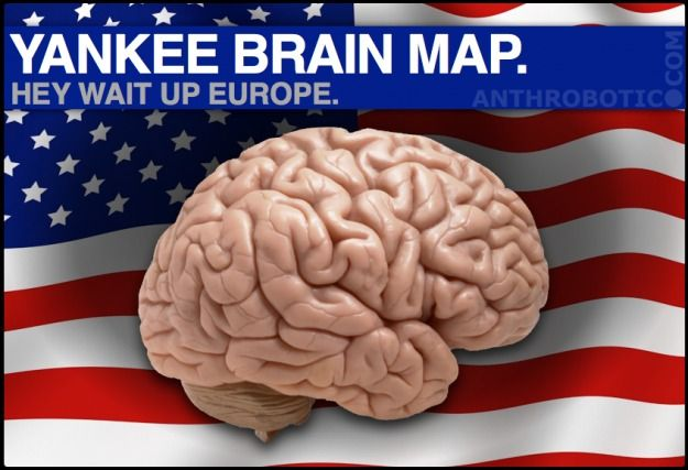 YANKEE.BRAIN.MAP